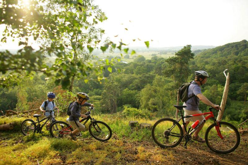 Ехали родители и дети каждый на своем велосипеде