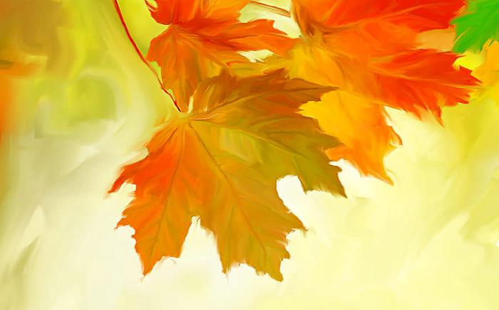 Осень. Осенний лист