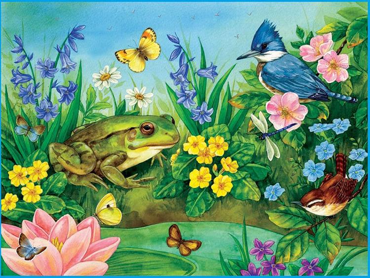 Лягушка, бабочки, птица