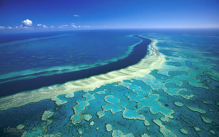 Кораловое море