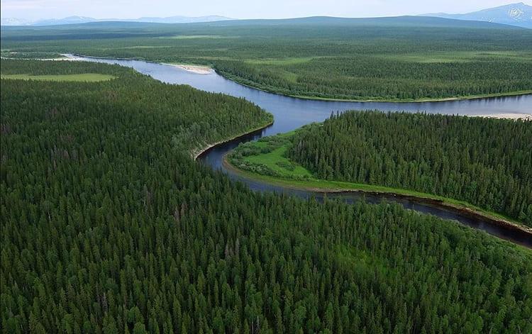 Леса. Река