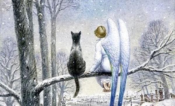 Кот и Ангел на дереве