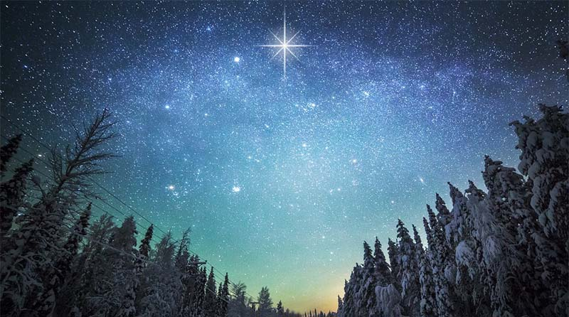 Лес, Вифлеемская звезда