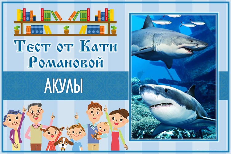 Тест от Кати Романовой_Акулы