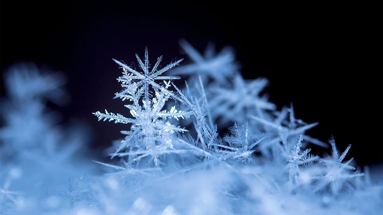 Узоры снежинок