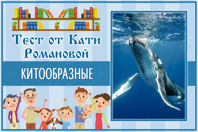 Тест от Кати Романовой_Китообразные