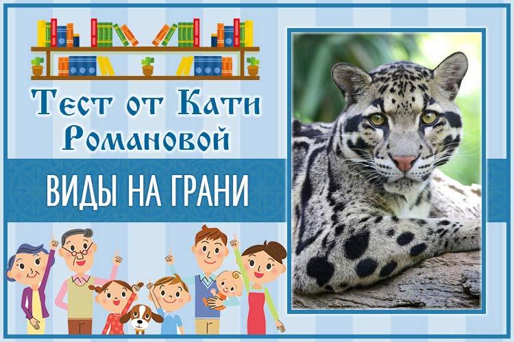 Тест от Кати Романовой_Виды на грани