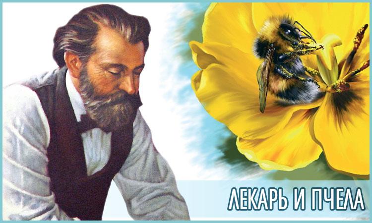 Лекарь и пчела