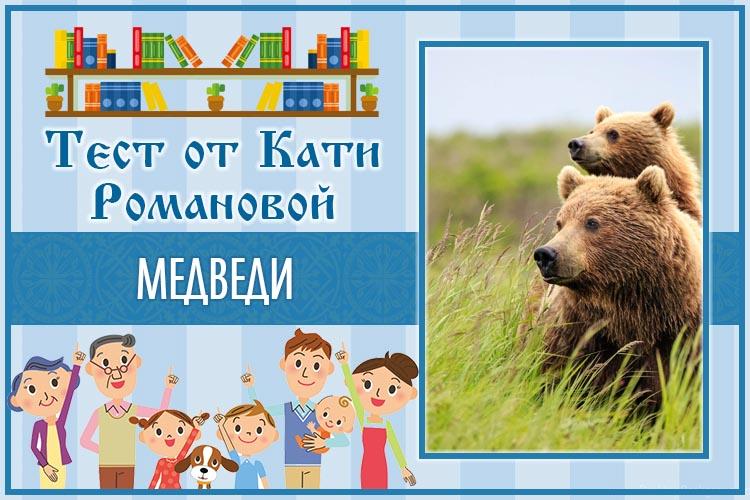Тест от Кати Романовой_Медведи