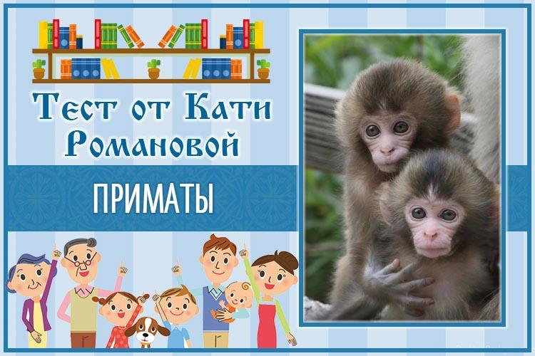 Тест от Кати Романовой_Приматы