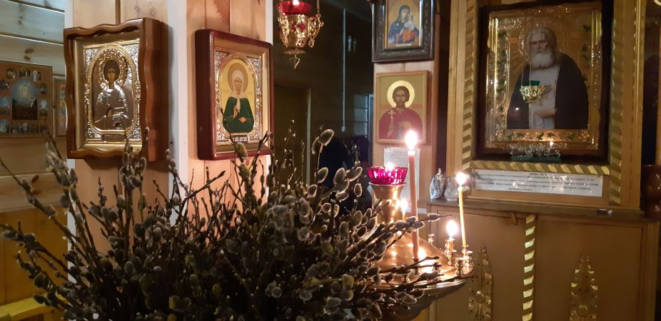 Вербное воскресенье. Свято-Казанский храм. Верба