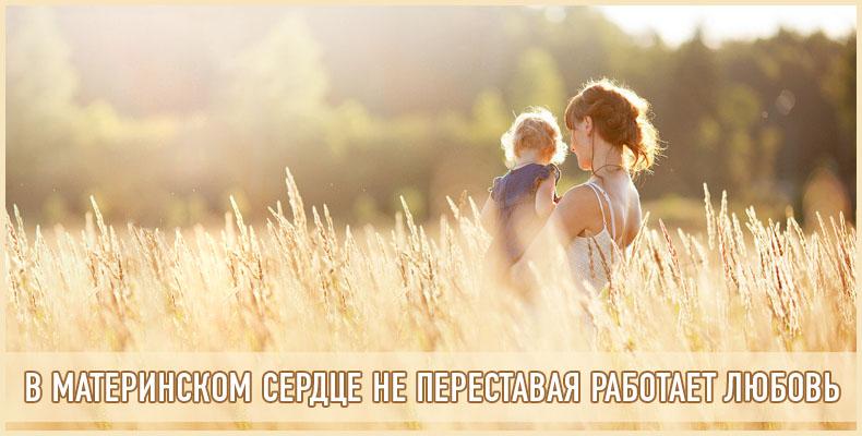 В материнском сердце не переставая работает любовь