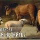 Жить или не жить? | Зинаида Полякова