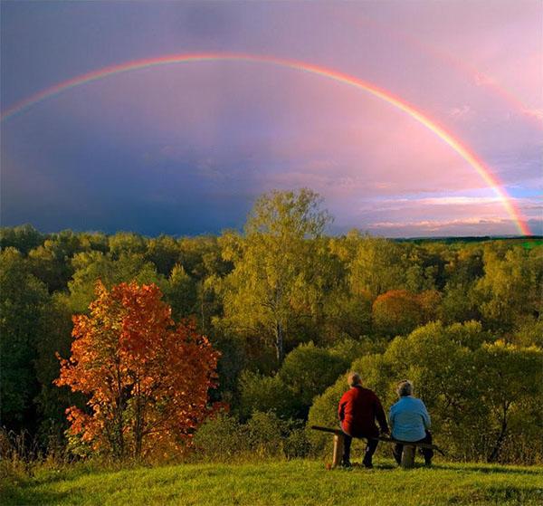 Смотрят на радугу