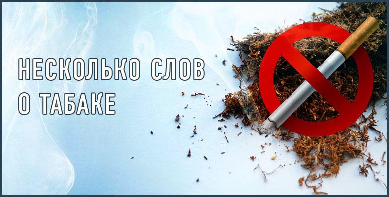 Несколько слов о табаке