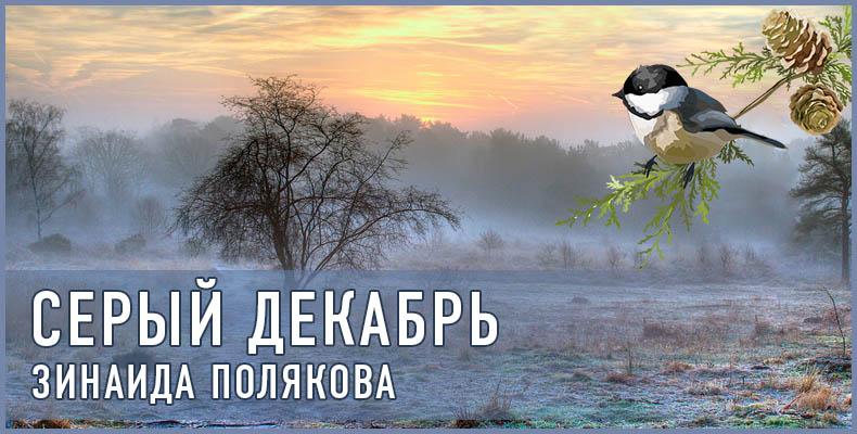 Зинаида Полякова. Серый декабрь
