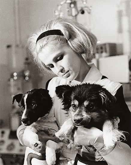 Собаки-космонавты Ветерок и Уголек