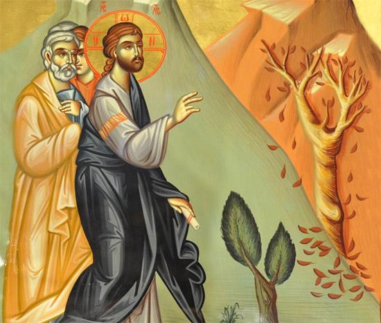 Христос и засохшая смоковница