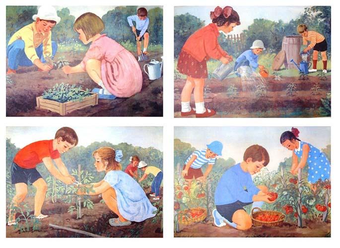 Дети помогают в огороде