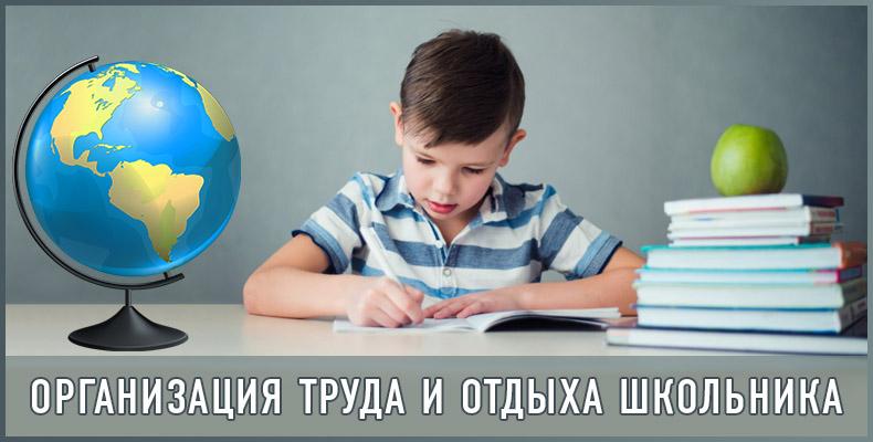 Организация труда и отдыха школьника