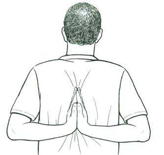 Упражнение «Бабочка» I вариант