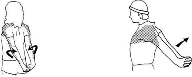 Упражнение «Лебедь»