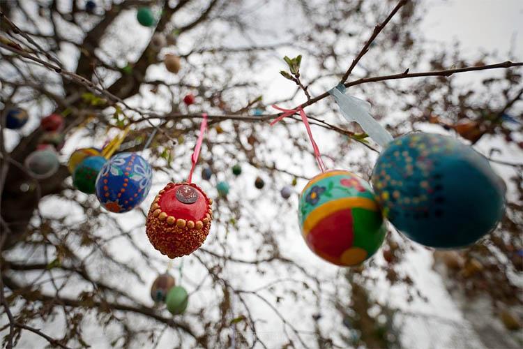 Пасхальные яйца на дереве
