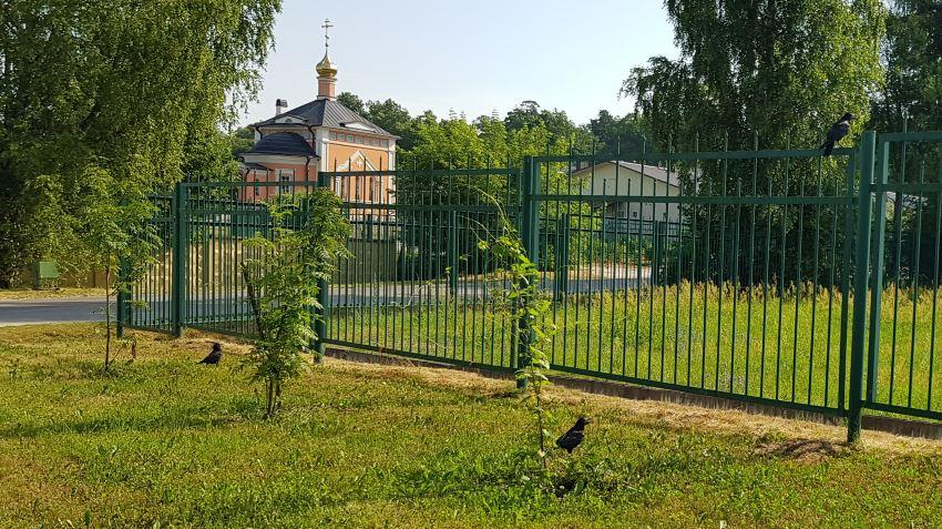 Монастырские грачи )