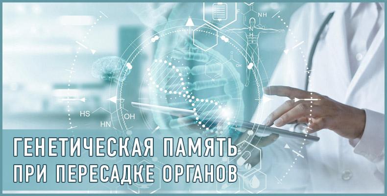 Генетическая память при пересадке органов