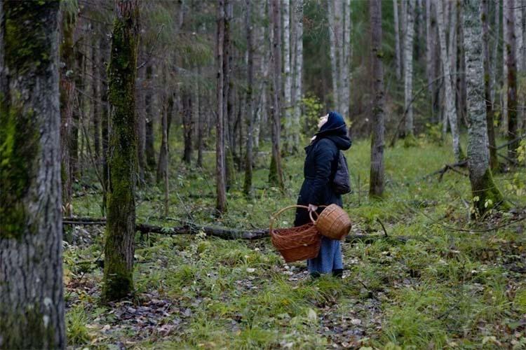 Женщина с корзинками в лесу